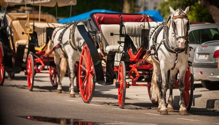 Mijas Pueblo - Classic whitewashed village... with traditional horse carriage rides